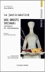 La justiciabilité des droits sociaux : Vecteurs et Résistances : Actes du colloque tenu au Collège de France, Paris, 25 et 26 mai 2011