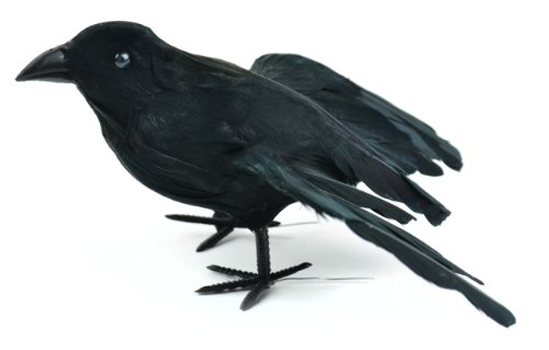 Touch of Nature 21722 1-Piece Feather Flying Crow on Wire for Arts and Crafts, 7-Inch, Black ()
