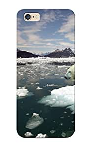 iphone 5 5s Hard Back With Bumper Silicone Gel Tpu Case Cover For Lover's Gift Polar Bears