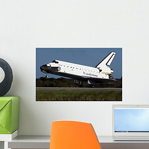 Space Shuttle Endeavour Wall Mural by Wallmonkeys Peel and Stick Graphic (18 in W x 11 in H) WM267700