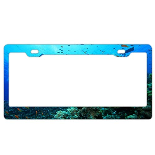 (zhangjialicense Abstract Great Barrier Reef License Plate Frame Car Tag Frame Auto License Plate Holder 12