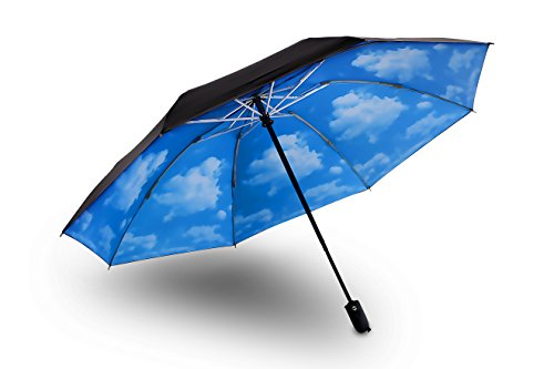 Rainpal Automatic Windproof Ergonomic Explosion