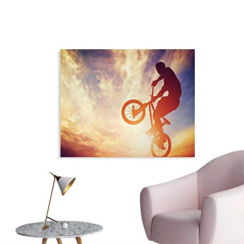 - Tudouhoho Modern Cool Poster Dynamic Man on The Bike Performing Silhouette Under Hazy Sunlights Hobby Image Print Art Stickers Multicolor W32 xL24