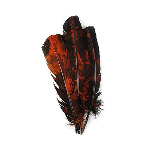 (Zucker 6 pc Tie Dye Turkey Feathers Craft Supplies, Headdress/Dream Catcher - Orange and Black - 10-12 inch)