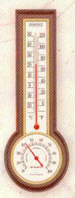 Ind/Out Thermometer