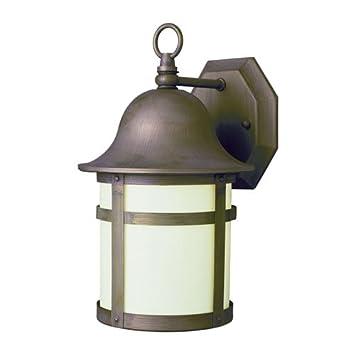 Trans Globe Lighting 12 Quot High Outdoor Wall Light In Bronze Pl