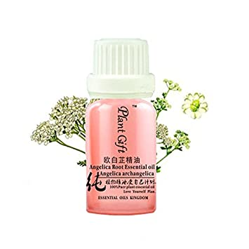 Plant Gift Angelica root Oil - 100% Pure Angelica Essential Oil - Boost Immune System