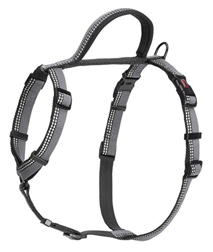 The Company of Animals - HALTI Walking Dog Harness - Adjustable and Comfortable Secure Fit - Maximum Control for Energetic Dogs - Large - Black