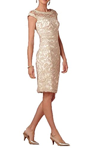 FNKS Cap Sleeve Sheath Half Sleeve Lace Prom Dress Mother of Bride Dress Champagne US 14