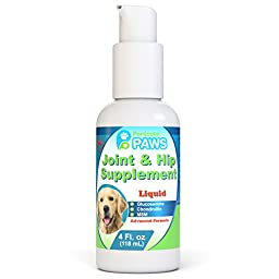 Glucosamine for Dogs Advanced Joint & Hip Supplement with MSM and Chondroitin - 4oz Pump