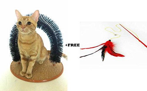 Irispets-Purrfect-Arch-Cat-Groom-Self-Grooming-Cat-Toy-Cat-Self-Groomer-Massager-and-Cat-Scratcher