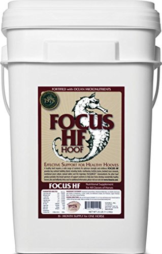 FOCUS HF HOOF MICRONUTRIENT FOR HORSES - 25 POUND by DavesPestDefense