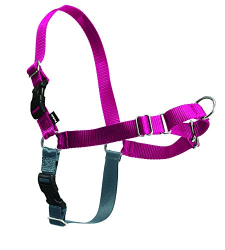 PetSafe Easy Walk Harness, Small/Medium, RASPBERRY/GREY for (Premier Tug)