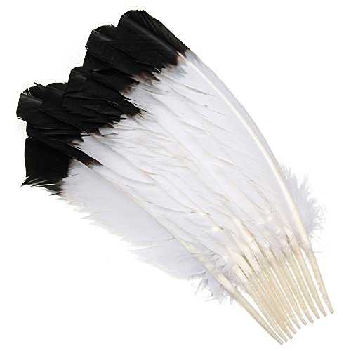 - Funnytoday365 50Pcs 12-16Inches 30-40Cm Long Dyed Turkey Wing Quill Feather Black Tipped Imitation Eagle Feathers for Showgirl Costume