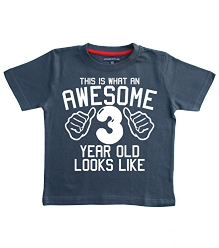 This What AN Awesome 3 Year Old Looks Like Navy Boys 3rd Birthday T-Shirt...