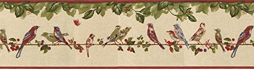 Wallpaper Border - Birds Prepasted Wall Border B30037 ()