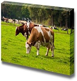 Grazing Calves Cows on Meadow Wall Decor