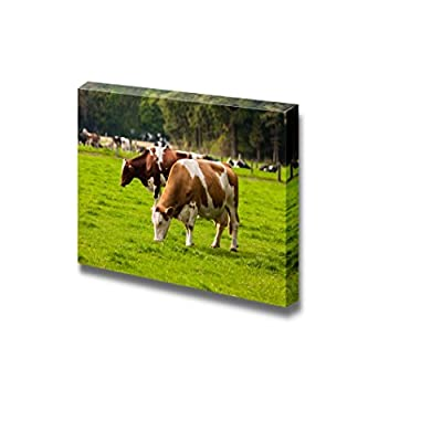Canvas Prints Wall Art - Grazing Calves/Cows on Meadow | Modern Wall Decor/Home Art Stretched Gallery Canvas Wrap Giclee Print & Ready to Hang - 24