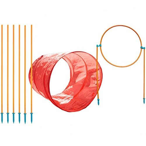 Agility Weave Poles (Zip & Zoom Outdoor Agility Kit, 3 Obstacle Dog Agility Kit with Dog Tunnel Weave Pole High Jump by Outward Hound)