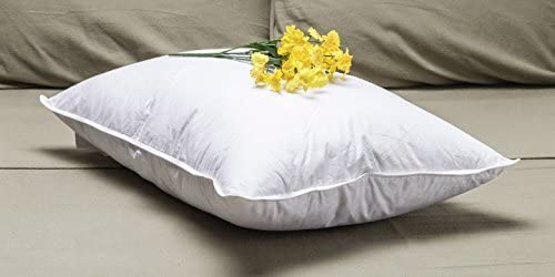 Featured in Many Hilton Hotels Pacific Coast Touch of Down King Pillow Set 2 King Pillows