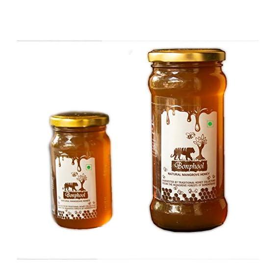 Bonphool Natural Mangrove Honey, 740 Grams (Pack of 2)