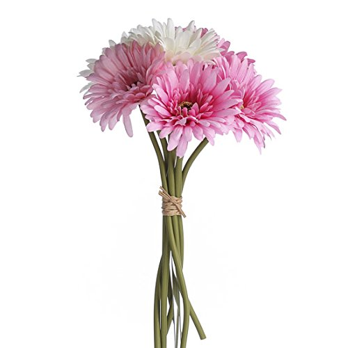 3 Bundles Crafting and Decorating Sweet Hues of Pink and Cream Gerbera Daisy Stems Tied with Raffia for Arranging