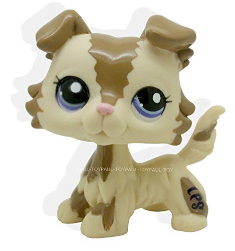 Boots From Dora Costumes - RARE Littlest Pet Shop Brown Collie Dog Puppy Blue Eyes Figure Puggy LPS #2210