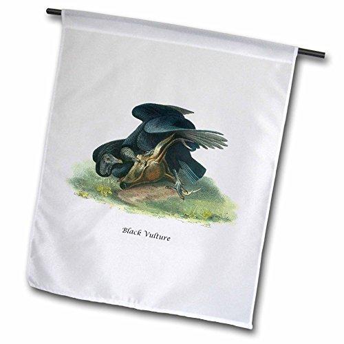 3dRose fl_114075_1 Black Vulture by John James Audubon Garden Flag, 12 by 18-Inch