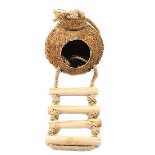 OMEM Hamster Coconut House,Bird House with Ladder ,Suitable for, Squirrels, Birds, Sparrows, Parrots,Small Animals by OMEM
