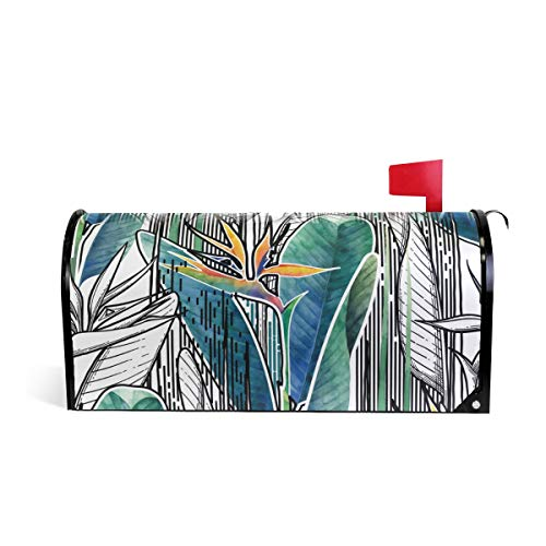 WOOR Flowers Drawn in Line Graphic and Watercolor Artis Magnetic Mailbox Cover Standard Size-18