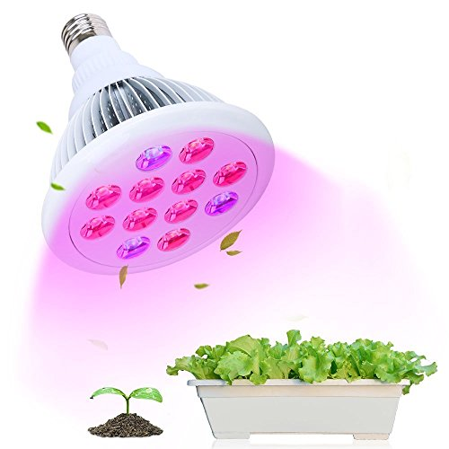 Led Lights Good For Growing Weed in US - 9