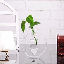 Round Glass Flower Pot Planter Hydroponic Vase Bottle Terrarium Container Home Decor