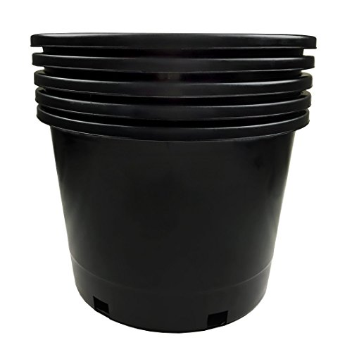 Calipots 5-Pack 10 Gallon Premium Black Plastic Nursery Plant Container Garden Planter Pots (10 Gallon) by Calipots