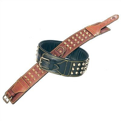 Petego La Cinopelca Padded Leather Double Studded Dog Collar, Black, 2 3/8 Inches, Fits 15 Inches to 18 Inches