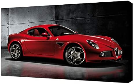 GGBAILEY D50319-F1A-PNK Custom Fit Car Mats for 2009 Alfa Romeo 8C Competizione Coupe Pink Driver /& Passenger Floor