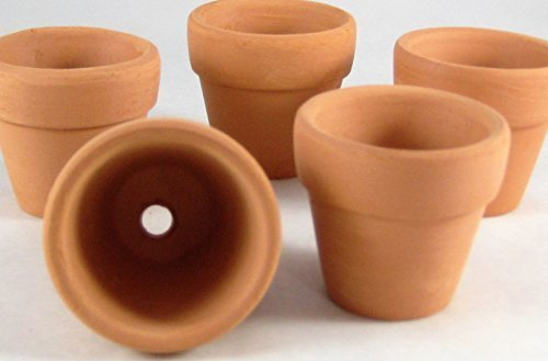 (Spring Garden Mini Terracotta Pots Small Clay Pots Great for Succulents or Gifts)