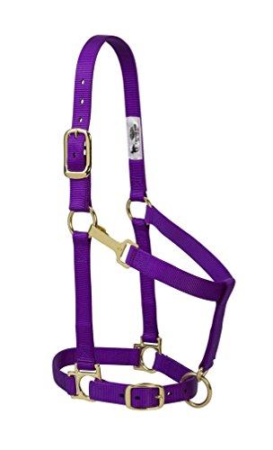 Weaver Leather Basic Adjustable Nylon Halter, Purple, 1