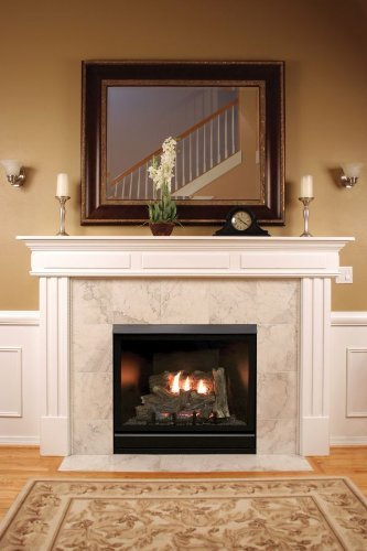 "Empire Comfort Systems Tahoe Clean Face Direct Vent MV Deluxe 42"" LP Fireplace with Blower"