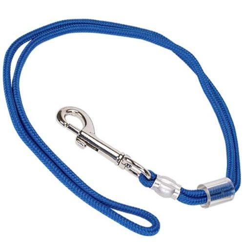 PetEdge Braided Nylon Grooming Dog Loop, 24-Inch, Royal Blue, My Pet Supplies