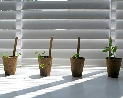 Flores Kit De Cultivo Set De Iniciación De Jardinería Semillas ...