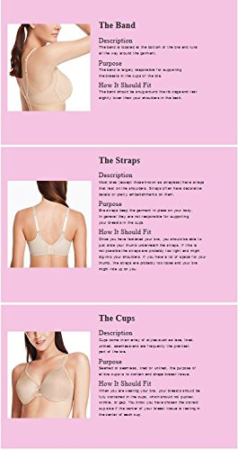 1cedd2b79e Wacoal Women s Halo Contour Spacer Bra Halo Contour Spacer Bra  Amazon.co.uk   Clothing