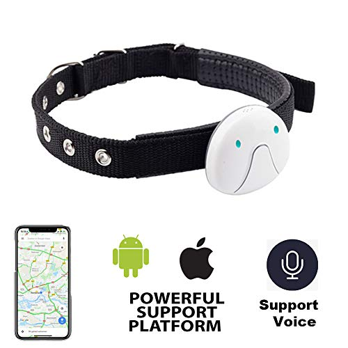 Alliner Pet Tracker GPS Tracking Collar for Dogs and Cats GPS Pet Tracker Activity Monitor Waterproof Wireless USB Rechargeable (White)