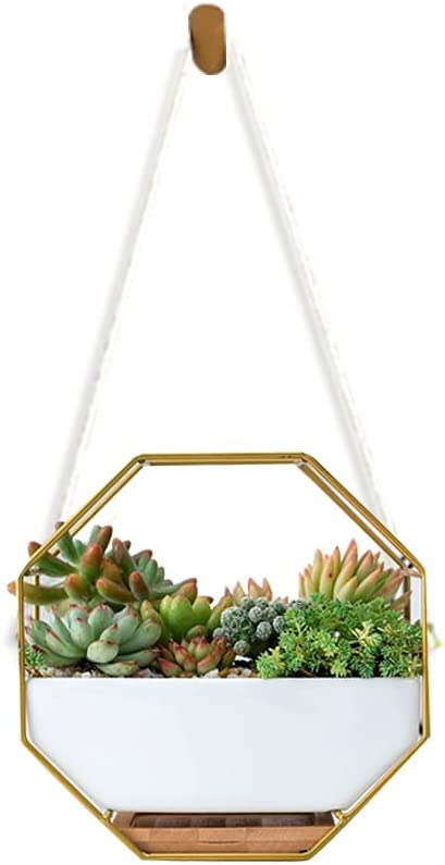 WEMEON Indoor planters & Hanging Planter Outdoor,Ceramic Succulent Hanging Plant Pot with Drainage,Hanging Indoor Planters Home Wall Decor for Succulent (White Ceramic/Gold Irons)