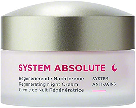ANNEMARIE BÖRLIND - SYSTEM ABSOLUTE Regenerating Night Cream - Anti Wrinkle Moisturizer with Retinol, Aloe, Algae and Meadowfoam Extracts - Nourishes, Tones, and Hydrates - 1.69 Fl. Oz