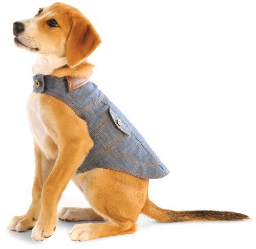 Dog Gone Smart 8-Inch Jean Jacket for Dogs, (Dog Gone Smart Jacket)