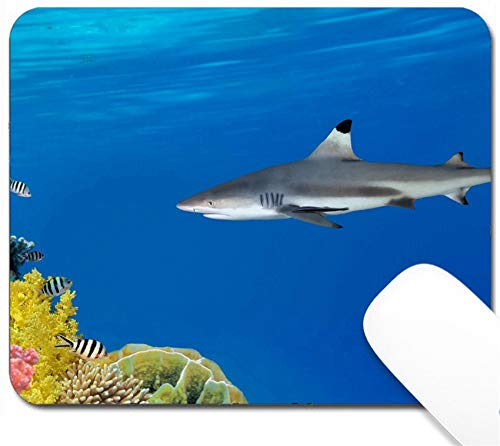 MSD Mouse Pad with Design - Non-Slip Gaming Mouse Pad - Image 10398286 Grey Reef Shark Swims