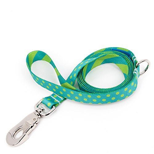 Aqua Leash - Buttonsmith Aqua Dots Dog Leash, 5 ft Length, Large Width - Fadeproof Permanently Bonded Printing, Extra Heavy Duty Quick Clasp, Resistant to Odors & Mildew, 100% Made in USA