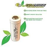 (2-PACK) Exell Battery 3.2V 1000mAh LiFePO4 Size