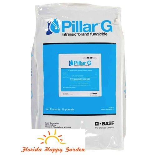 Pillar G Intrinsic Granular Fungicide (30 LB)