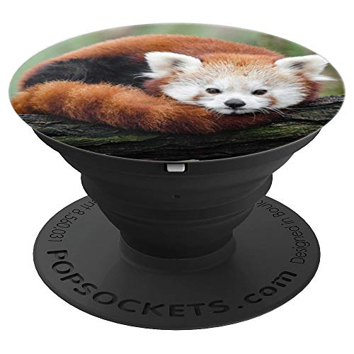 Cute Red Panda Spirit Animal Gift - PopSockets Grip and Stand for Phones and Tablets